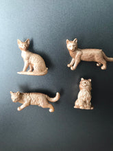 Load image into Gallery viewer, Rose Gold Cat Magnets