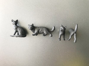 Black Cat Magnets