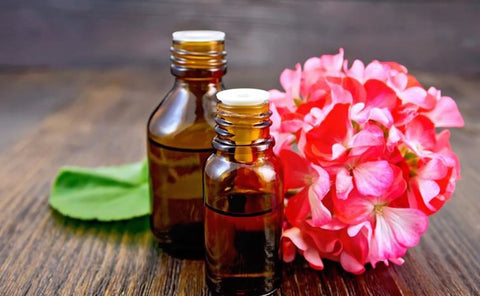 Geranium Oil: Uses & Incredible Benefits For Glowing Skin – Alex ...