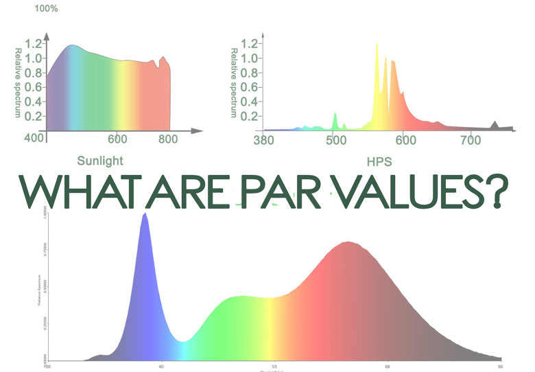 What are PAR values?