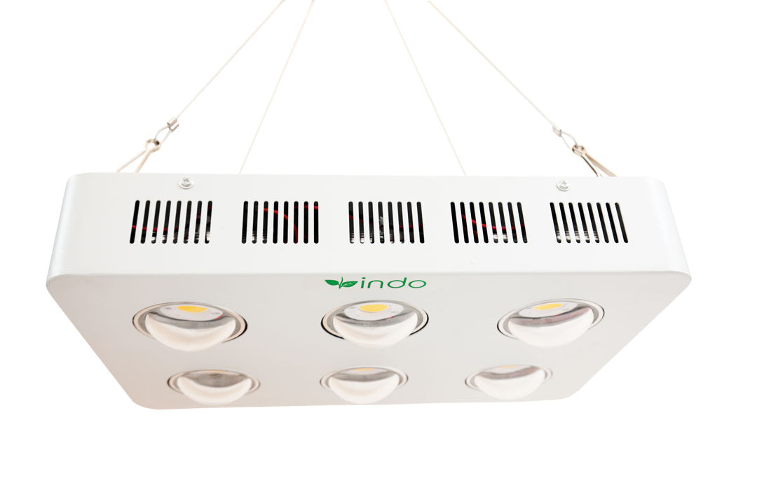 COB LED Grow Light 1200W - CREE Full-Spectrum - 6 x COB LAMPS - 300W (actual draw)