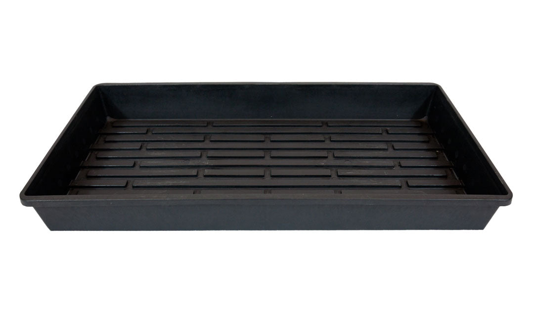 "Germination Tray 21"" x 11"" for Seedlings or Cuttings"