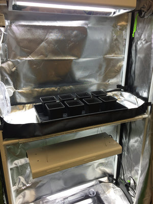 "Grow Tent - 2 in 1 48""x36""x72"" - 1680D Oxford Mylar, 19mm Steel poles, Observation Window, HD Zippers, Removeable Trays"