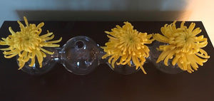 Large Caterpillar Glass Vase
