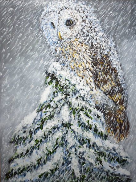 Owl in a Snowstorm  Greetings and Note Cards  Prints  add a seasonal greeting