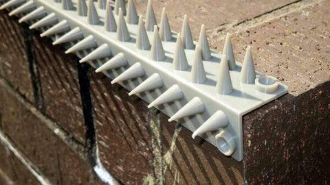 Anti Climb Prickle Spikes Top-n-Side (individual strip) | Roller Barrier