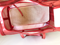 Red Mesh Pet Carrier Bag