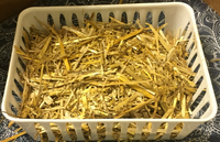 Leech Breeding Straw Bed