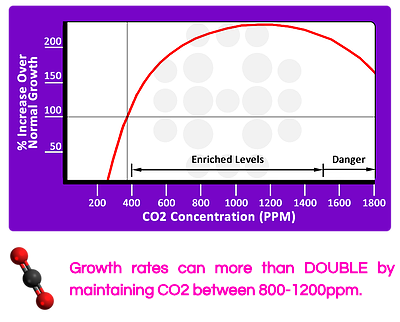 CO2 effect on growth rate.