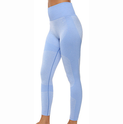 Baby blue seamless leggings