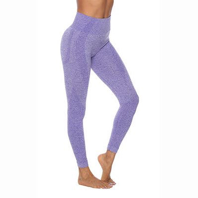 Lilac seamless leggings