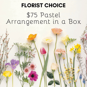 Florist Choice Pastel Arrangement in a Box