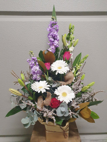 Pick of the Day - $60 - Boxed Arrangement