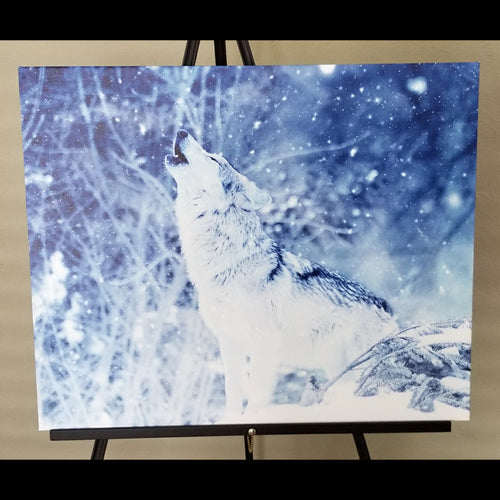 Pre-made Arctic Wolf (26