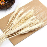20PCS Artificial Autumn Wheat