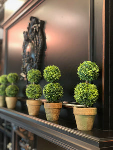 Two-Tiered Topiary Potted Plant