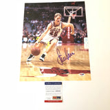 Steve Kerr signed 11x14 photo PSA/DNA Chicago Bulls Autographed