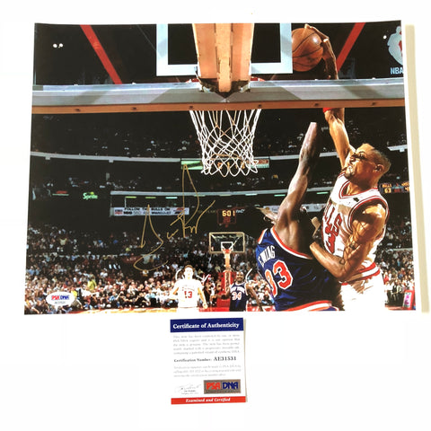 Scottie Pippen signed 11x14 photo PSA/DNA Chicago Bulls Autographed