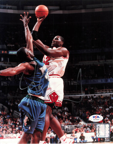 Elton Brand 8x10 photo PSA/DNA Chicago Bulls Clippers Autographed