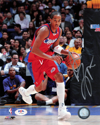 Shaun Livingston 8x10 photo PSA/DNA Los Angeles Clippers Autographed