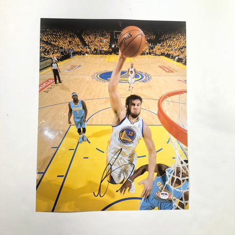 Andrew Bogut signed 11x14 photo PSA/DNA Golden State Warriors Autographed