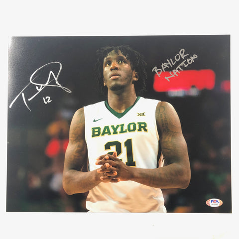 Taurean Prince signed 11x14 photo PSA/DNA Baylor Autographed