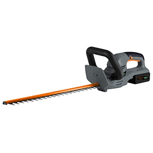 Scotts Outdoor Power Tools LHT12224S 24-Volt 22-Inch Cordless Hedge Trimmer, 2.5Ah Battery and Fast Charger Included
