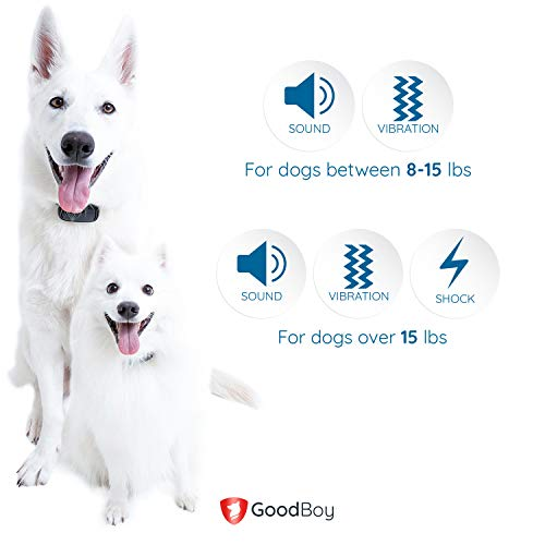 GoodBoy Small Size Remote Collar for Dogs with Beep Vibration and Shock Modes for Pet Behavior Training - Waterproof & 1000 Feet Range - Suitable for Small, Medium or Large Dogs (8+ lbs)