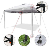 Leader Accessories 10' x 10' Pop Up Canopy Tent Instant Shelter Portable Folding Canopies Straight Leg with Wheeled Carry Bag, Silver