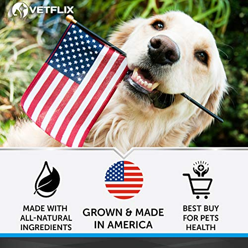 VETFLIX Cranberry Dog & Cat Uti Treatment - BEST UTI for Pets - made in USA - Dog & Cat Kidney Support - Cat Bladder Drops - Pet Immune Health Supplement - Marshmallow, Dandelion Root, Pumpkin Seed