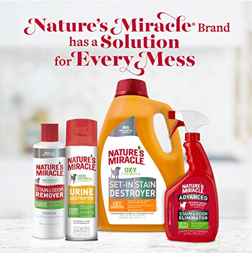 Nature's Miracle Urine Destroyer Dog, For Tough Urine Messes