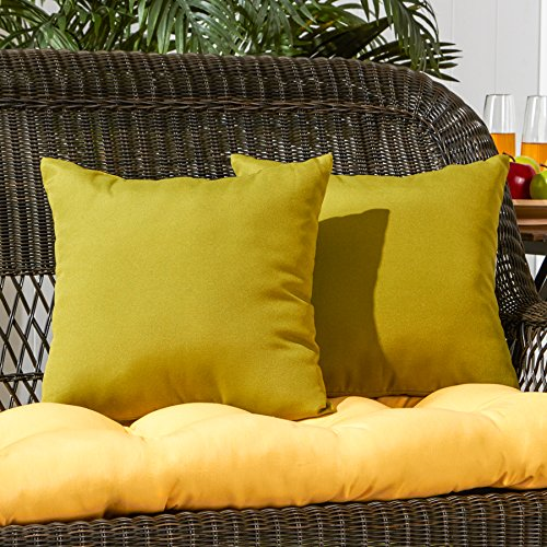 Greendale Home Fashions 17 in. Outdoor Accent Pillow (set of 2), Kiwi