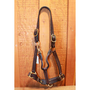 "1"" Economy Leather Halter-Atomic 79"