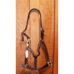 "3/4"" Economy Leather Halter-Atomic 79"