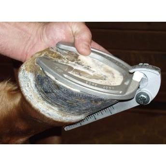 Cavalry #2 Hoof Gage For Larger Breeds-Atomic 79