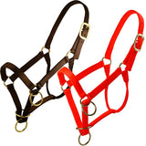 Large Packer's Halter W/Triple Thick Nylon Webbing in Orange-Atomic 79