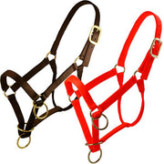 Regular Horse Packer's Halter W/Triple Thick Nylon Webbing in Orange-Atomic 79
