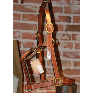Silverleaf Fancy Halter In Golden Oak-Atomic 79