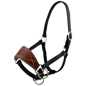 Small Mule Halter W/Oil Leather Noseband and Nylon Webbing-Atomic 79