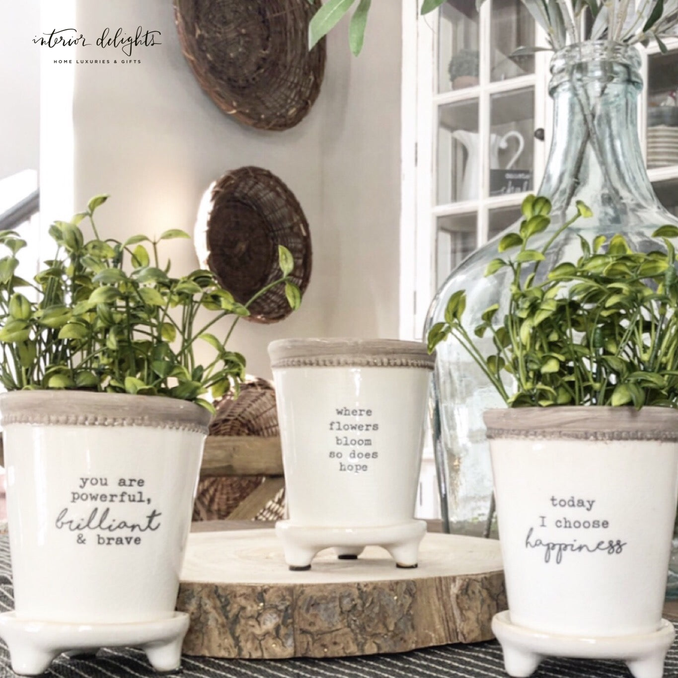 set of 3 Happy Saying Planters