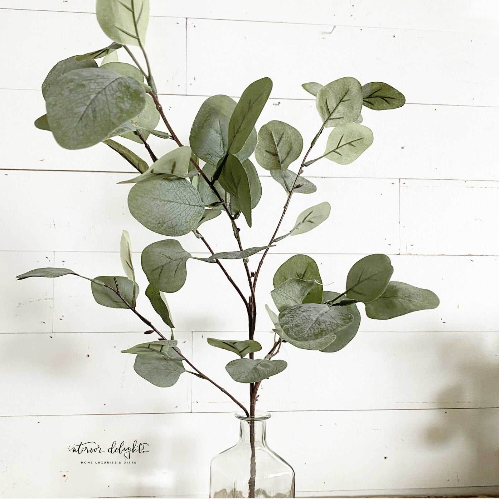 "36"" tall eucalyptus branch - Interior Delights Parker"