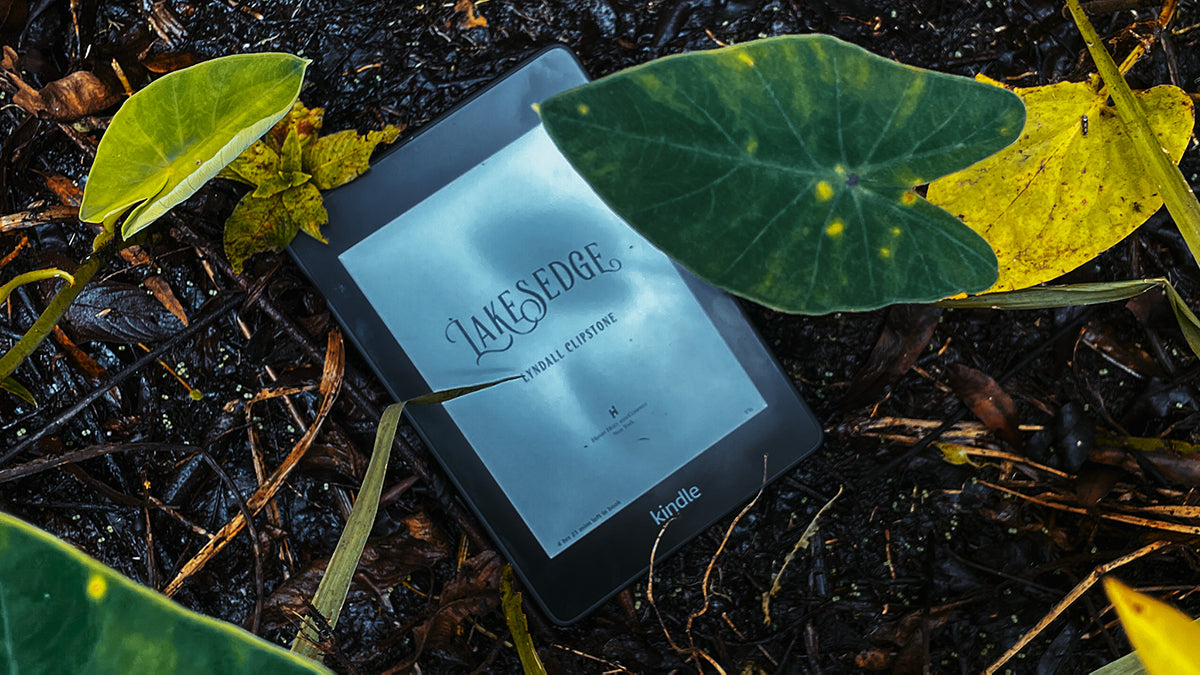 lakesedge by lyndall clipstone book review