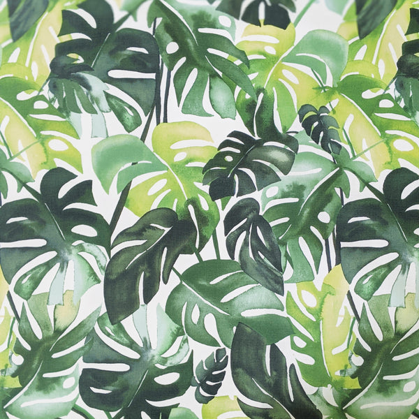 Matte Laminated Fabric: Philodendron