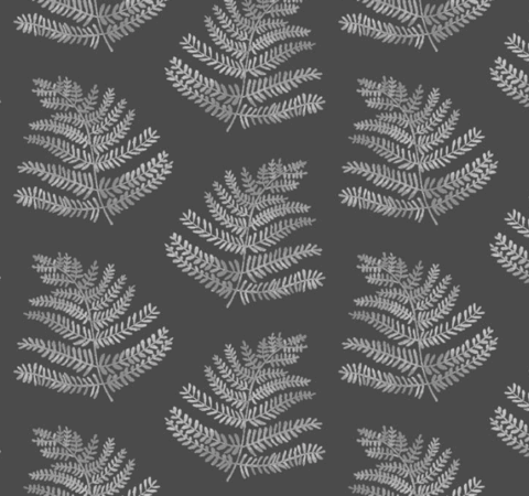 Ferns in Peat