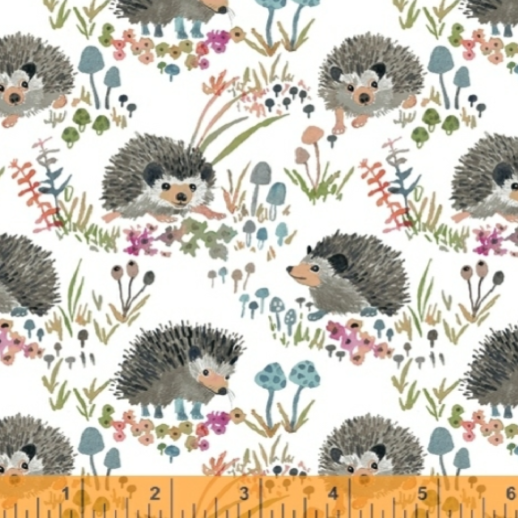 Fox Wood: White Hedgehogs