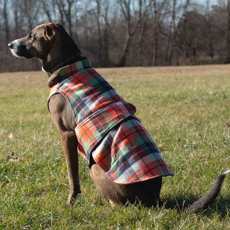 Intro to Pet Sewing: Dog Jacket