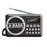 Portable FM Radio SD USB MP3 Input Clock Alarm - R2080 - GADGET EXPRESS®