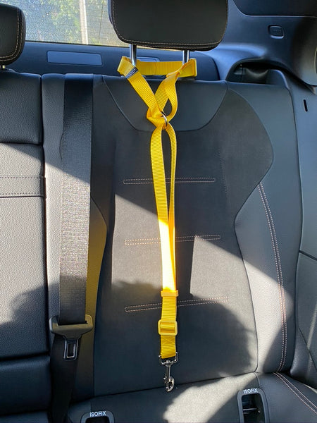 Head Rest Car Restraint