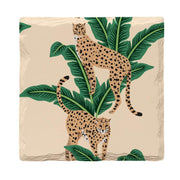 Cheetahs |Drink Coaster Set