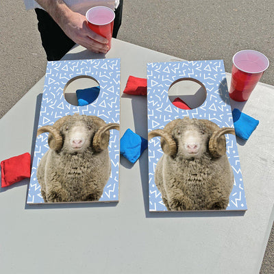 Carolina Blue Ram | Fun Size Mini Cornhole Game